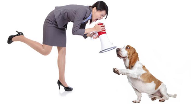Harte Methoden haben in der Hundeausbildung nichts verloren